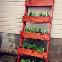 Wall wall herb garden Melbourne
