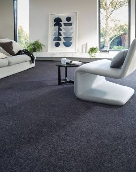 What type of carpet for a house