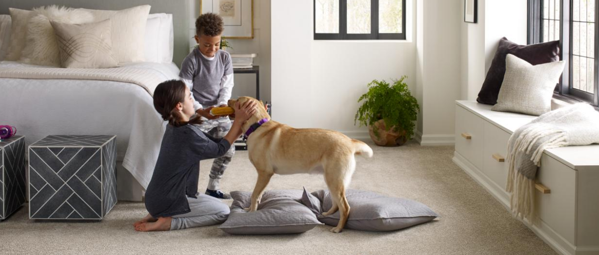 Pet freindly home design style